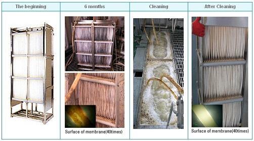 Những tấm lọc sinh học MBR được làm sạch bằng chlorine
